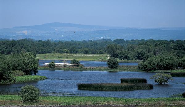 Lagoa-de-Cospeito